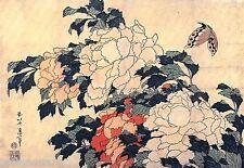 Katsushika Hokusai Poenies and butterfly Canvas Print