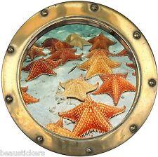 Stickers hublot trompe l'oeil Etoiles de mer réf: 8828