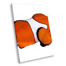 Clownfish Orange White Portrait Animal Canvas Wall Art Large Picture Prints