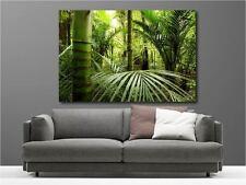 Cuadro pinturas decoración en kit Bosques Tropicales ref 15070528