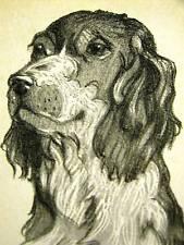 Rice SETTER 1931 Vintage Dog Art Print Matted