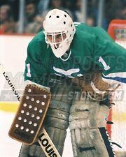 Mike Liut Hartford Whalers goalie 8x10 11x14 16x20 photo 986