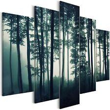 Wandbilder xxl Wald Landschaft Natur Nebel Leinwand Bild Wohnzimmer c-B-0357-b-m