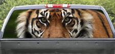 Rear window graphics Tiger Closeup