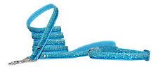 bleu turquoise paillettes Petit Chien Chiot Collier & Cordon 8-12 ou