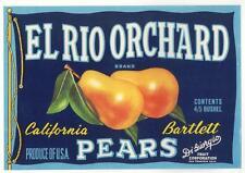 *Original* EL RIO ORCHARD San Francisco DI GIORGIO Pear Label NOT A COPY!
