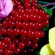 "Wholesale 4mm-10mm Red jade Round Loose, Beads jade 15 """