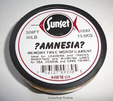 Sunset amnesia clair 100m, ligne de tir, la mémoire libre leader, 20lb,30 lb,40 lb