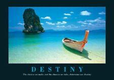 New Canoe on the Shore Destiny, Aspirational Mini Poster