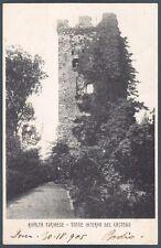 TORINO RIVALTA DI TORINO 02 CASTELLO Cartolina 1905
