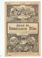 JOURNAL 1895 COURSE DE CANOTS LE MARTIN PECHEUR LES BATEAUX TORPILLEURS G.HEM