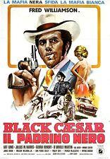 BLACK CAESAR Movie Poster Blaxploitation Fred Williamson
