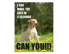 Labrador Cane può rendere il cancello in metallo stile Retrò Vintage, Segno Di Placca Muro