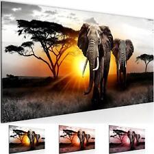 WANDBILDER Afrika Elefant VLIES LEINWAND BILD - XXL BILDER KUNSTDRUCK 007612P