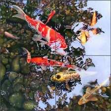 Koi Tile Backsplash Macon Asian Fish Art Ceramic Mural LMA024