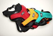 sleepypod clickit Sport auto-sicherheitsgurt-geschirr para perro de viaje coche
