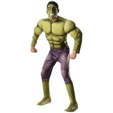 Hulk Costume Adult Avengers Superhero Halloween Fancy Dress