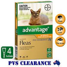 Advantage Orange 4 for Kittens & Small Cats Up To 4 kg -  4 Pack - Kitten Flea