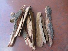 seemandelbaumrinde 25/50/100 gramm - Catappa Bark