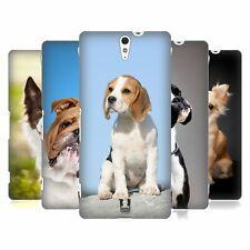 HEAD CASE DESIGNS POPULAR DOG BREEDS HARD BACK CASE FOR SONY PHONES 2