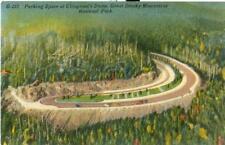 Linen 1930s: Clingman's Dome, Great Smoky Mountains, Tn