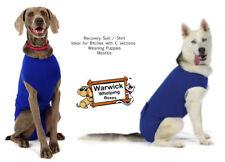 Cane Veterinaria RECUPERO Camicia/Vestito IDEAL Pet CHIRURGIA Svezzamento Cucciolo mastite