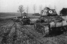 WW2 - Belgique 1940 - Chars français en patrouille à la frontière belge