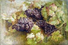 fruits pattern grapes G. Segantini Tile Mural Bathroom Backsplash Marble Ceramic