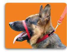 Canny Collar Mejor Collar de adiestramiento en el mercado (rojo) autorizado del Vendedor