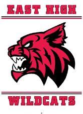 Película de Disney High School Musical Wildcats con el logotipo de hierro en Tee Camiseta Transferir