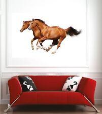 Affiche poster décoration murale Chevaux réf 34664017 (6 dimensions)
