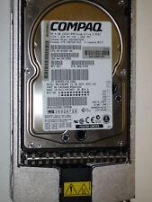 HP Compaq SCSI Ultra 3 36,4 GB 10000 10K BD036635C5  4WD4708192 MAJ3364MC 36,4GB