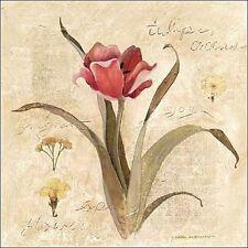 Carol Robinson: Red Tulip Keilrahmen-Bild Leinwand Blumen Tulpen Blüte