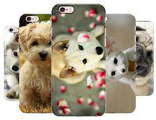 Mignon Chien Carlin Fancie Renard Étui Pour Téléphone Coque Apple Iphone 5 5c 6