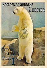 Chester Zoo VINTAGE POSTER RETRO Style Railway Travel ADVERTISING ART Print