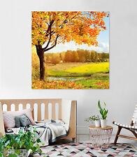 3D Maple Tree Leaves 34 Wall Stickers Vinyl Murals Wall Print Decal Art AJ STORE