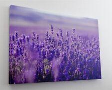 Bilder auf Leinwand Fensterblick Lavendel Feld  Poster XXL 120 cm*80 cm 504q