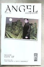 Idw Publishing Scriptbooks Angel City Of 2006 nm/vfn Buffy