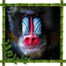 Sticker autocollant Cadre bambou Singe7171