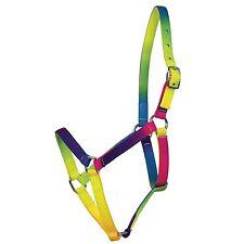 Halter Stable, weidehalfter, Halfter Arc-en-ciel élégant,multicolore,réglable