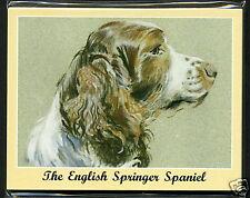 The English Springer Spaniel - Dog Breeds - 7 Card Set
