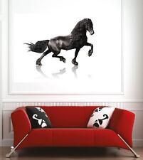 Affiche poster décoration murale Cheval réf 65548516 (6 dimensions)