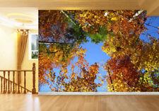 3D Albero,Arbusto Parete Murale Foto Carta da parati immagine sfondo muro stampa
