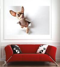 Affiche poster décoration murale Chien réf 59727268 (6 dimensions)