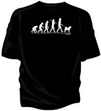 Evolution of Man, American Akita pet dog t-shirt.