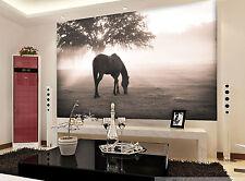 3D Holz Pferde Fototapeten Wandbild Fototapete Bild Tapete Familie Kinder887