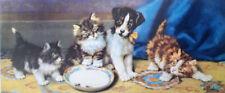 JACK RUSSELL SMOOTH FOX TERRIER KITTEN CAT & DOG ART PRINT - Victorian -