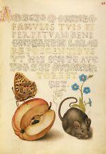 "Mira Calligraphiae Monumenta: ""Fritillary, Apple, Mouse"" — Giclee Fine Art Print"