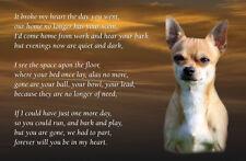 Chihuahua Dog Fridge Magnet Pet loss Bereavement Memorial Gift