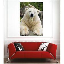Affiche poster ours blanc 8453815 Art déco Stickers